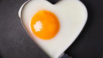 Cholesterin ist nicht die Ursache von Herzerkrankungen