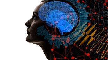 Pour conserver un cerveau et un système nerveux en parfaite santé, vous devez faire travailler vos jambes