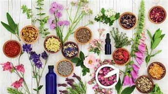 10가지 상위 약용식물 및 약초