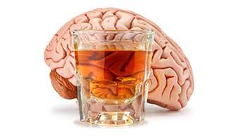 Un verre d'alcool et un cerveau