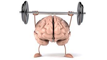Trainieren des Gehirns