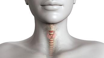 ヨウ素欠乏症: 甲状腺機能低下の兆候、症状、および解決策