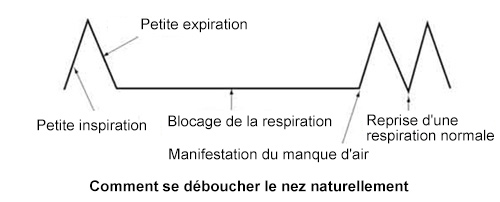 Comment se déboucher le nez naturellement