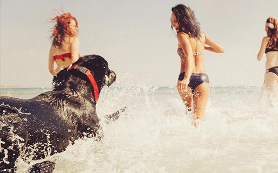 grupo de garotas correndo na água como cachorro