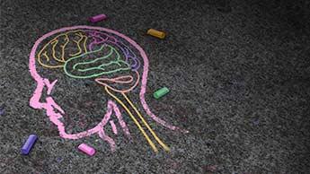 intestins et cerveau