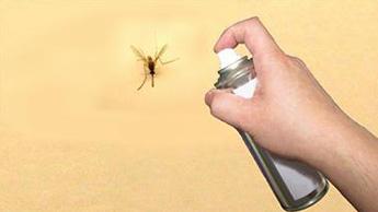 모기 살충제 내성