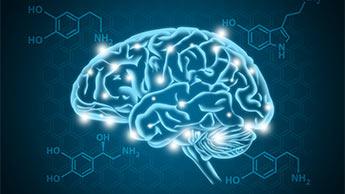cérebro iluminado