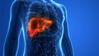 O glifosato e a esteatose hepática