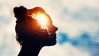 뇌와 햇빛