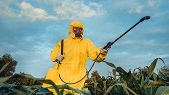 EU, infiltriert von der Pestizidindustrie, plagiiert Sicherheitsstudie