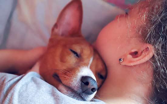 애완동물과 포옹