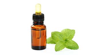 Olejek z mięty zielonej: łagodny olejek miętowy
