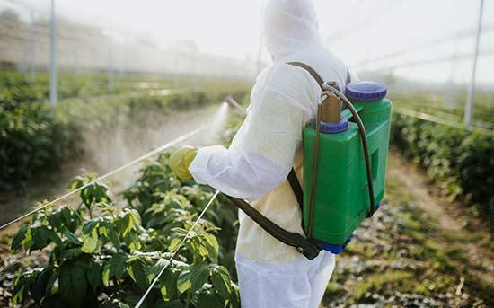 농약을 뿌리는 농부