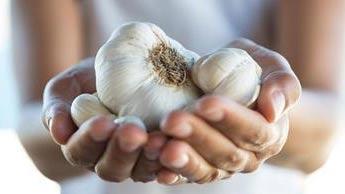 Manger de l'ail pourrait préserver la santé cérébrale