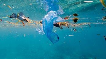 プラスチック海洋汚染