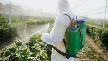農薬を噴霧している農業従事者
