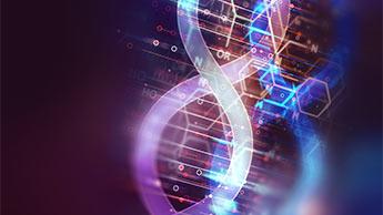 DNA-Moleküle EMF-Exposition