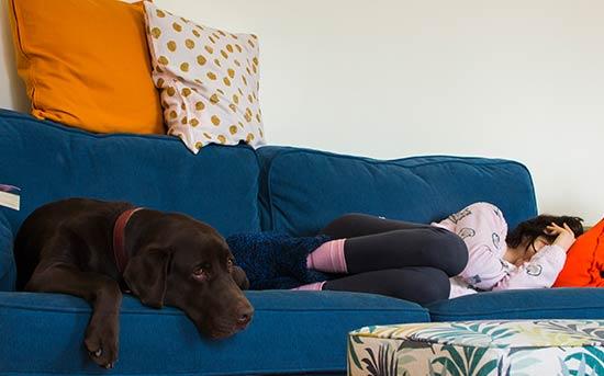 우울증 주인과 강아지