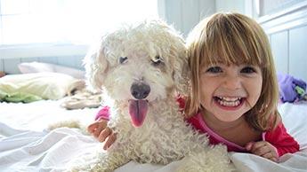 Hunde eignen sich am besten, aber auch diese anderen Haustiere sind super, um Ängste zu reduzieren