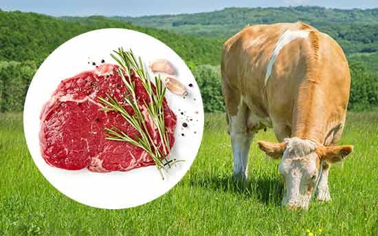 草饲有机牛肉