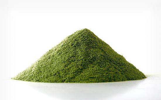 녹색 가루