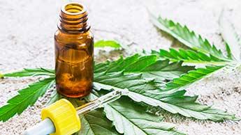대마초와 칸나비디올(CBD)의 수많은 치유 효능