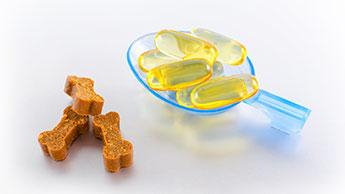 오메가-3 지방산 및 콜린