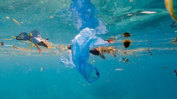 Será possível viver sem plástico?