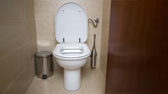 Abitudini di toilette
