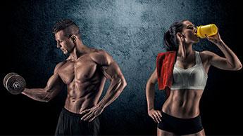 근육 형성
