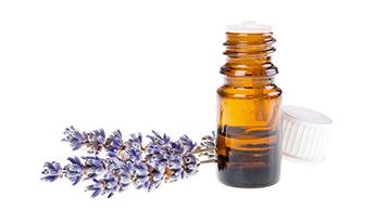 Lieben Sie Lavendel? Probieren Sie Lavendelöl