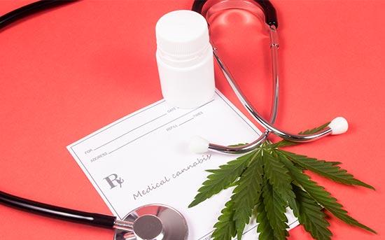 의료용 대마초