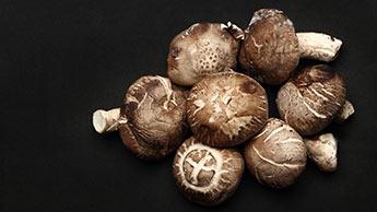 Shiitake-Pilze verbessern das Immunsystem