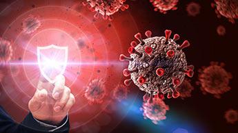 anticorps coronavirus
