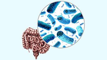 Come migliorare la flora batterica intestinale?