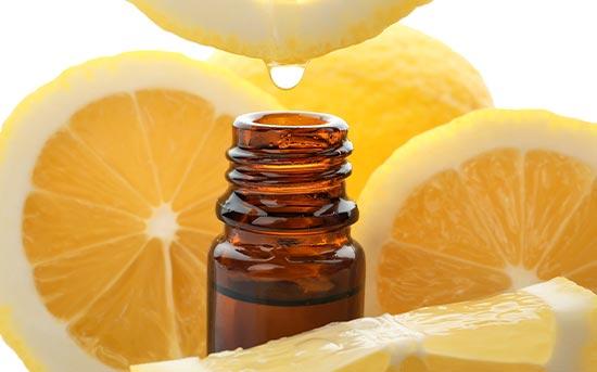 레몬과 레몬 오일