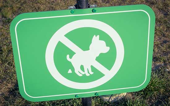 개가 용변을 보는 것을 금하는 표시판
