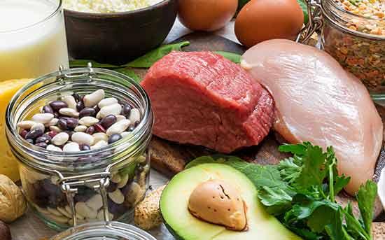 비타민 b가 풍부한 식품