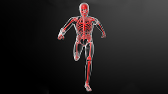 lesercizio fisico aiuta la disfunzione erettile