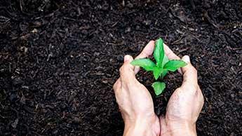 재생 농업을 지원해야 하는 6가지 주요 이유