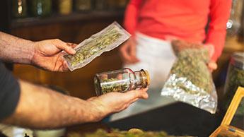 le cannabis et les risques pour la santé