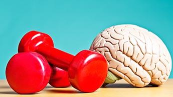 スポーツ は-脳 のために なる