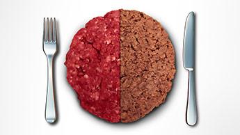 fausse viande et viande