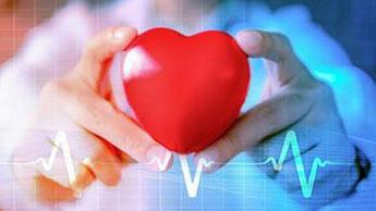magnésium en lien avec une meilleure santé cardiaque