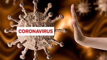 Quercétine et vitamine D : des alliés contre le coronavirus ?