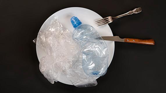 Alimentos de plástico