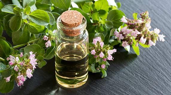 bienfaits huile origan