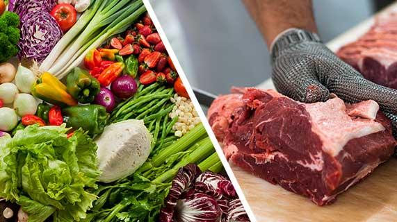 채식 및 육식