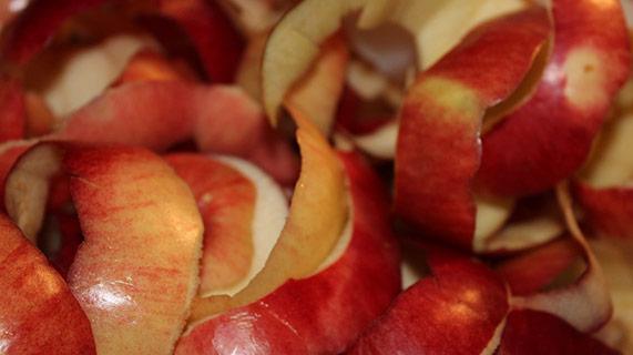 skórka jabłka