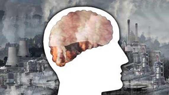 대기 오염과 뇌